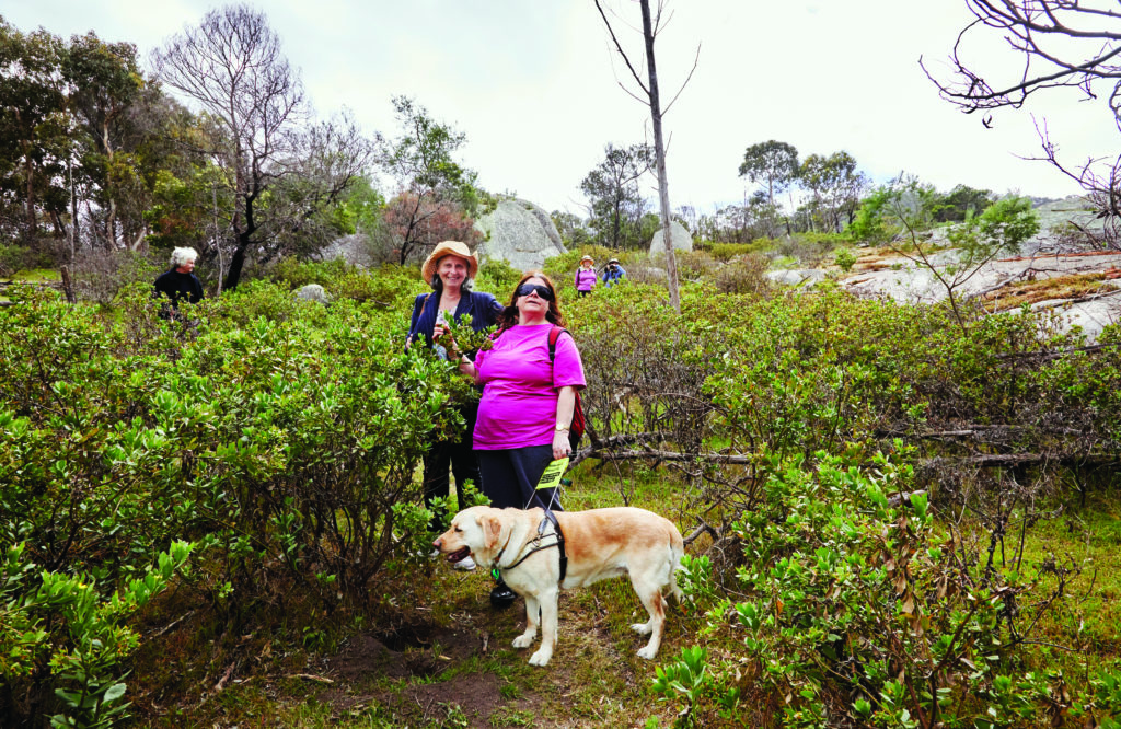 Two women and an assistance animal (golden labrador) standing among bushes in You Yangs Regional Park. Others are visible in the background/distance.