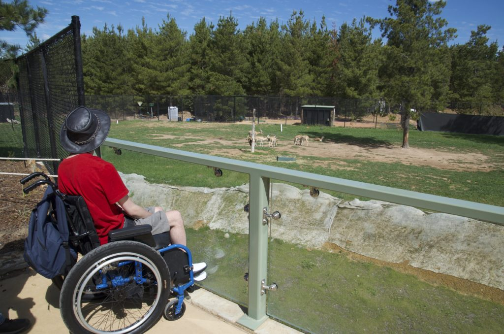 A young man in a wheelchair, sitting behind a fence overlooking a large green enclosure for zoo animals